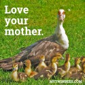 Love your mother.
